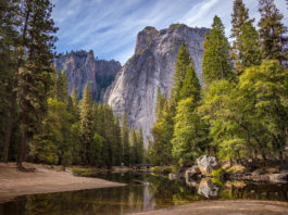 Yosemite National Park nature-1209302_1920