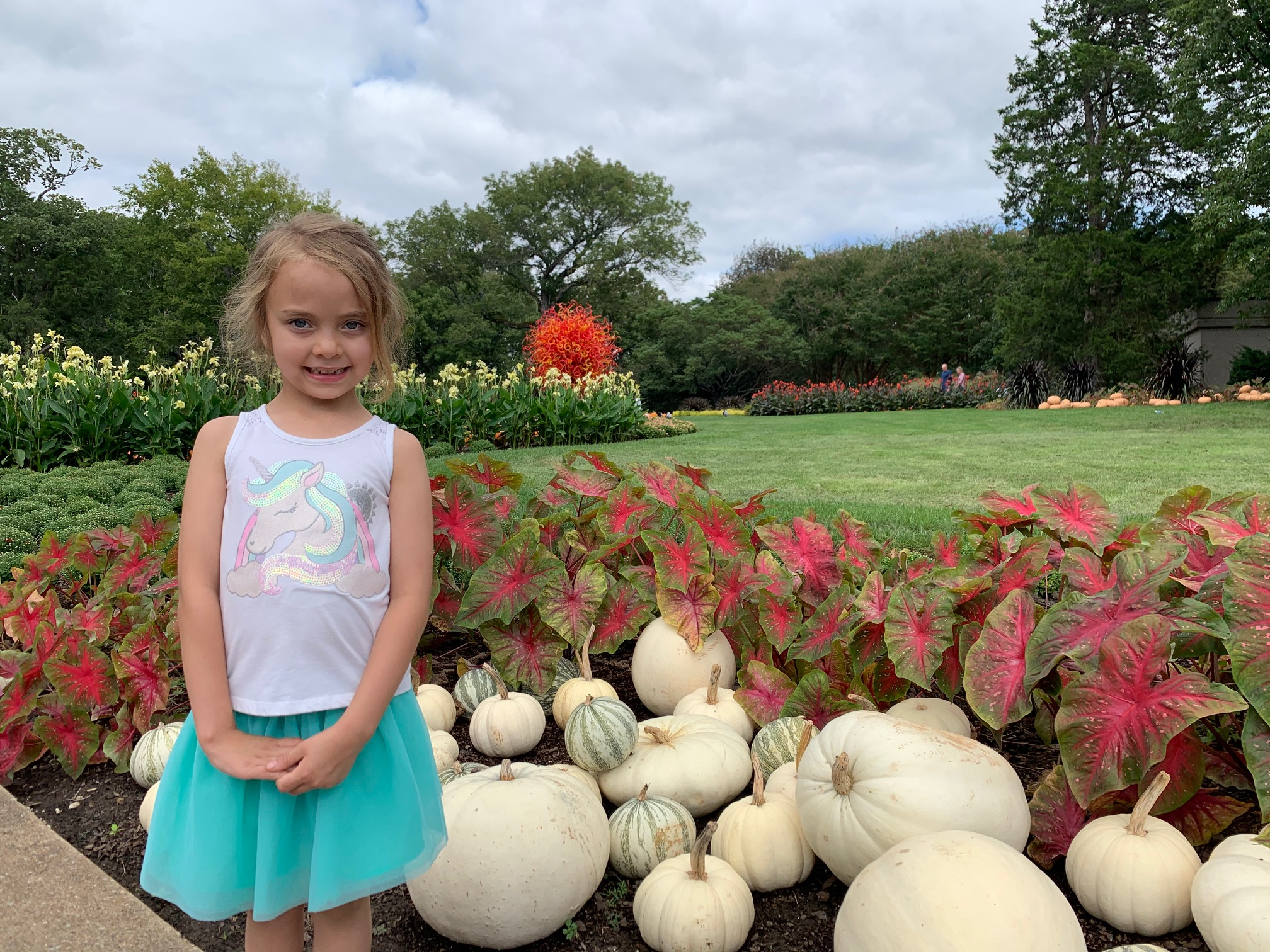 Cheekwood Harvest Scarlett with white gourds with the Summer Sun in background 2020-09